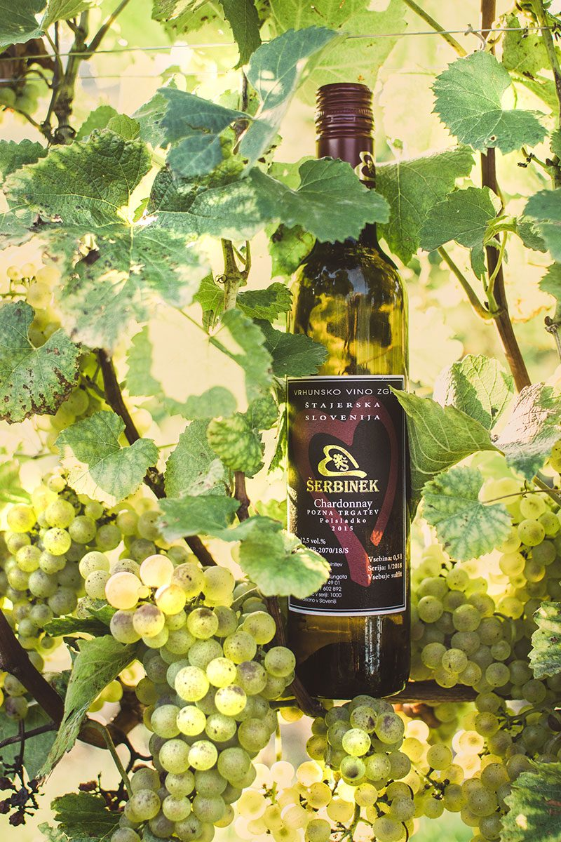 Vina Šerbinek - Chardonnay - Vino iz srca