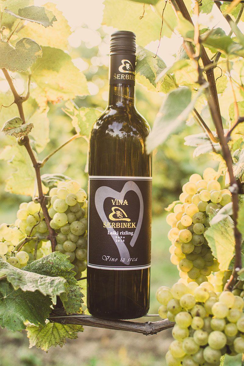 Vina Šerbinek - Laški rizling - Vino iz srca
