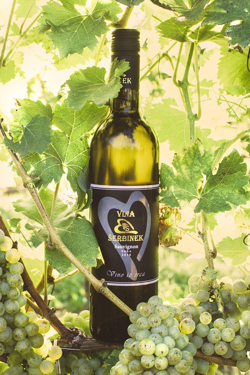 Vina Šerbinek - Sauvignon - Vino iz srca
